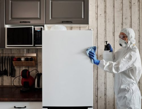 Cleaning vs Disinfecting: What's the Difference?